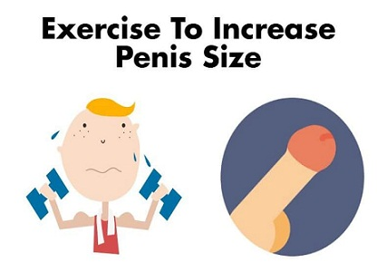 best rated penis enlargement exercise